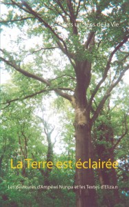 LA TERRE EST ECLAIREE - couv