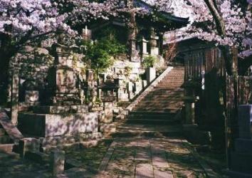 Le culte des ancêtres au Japon
